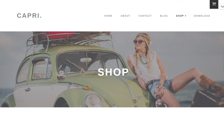 Capri Pro: The 50 Best WordPress eCommerce Themes of 2019 (Free and Paid)