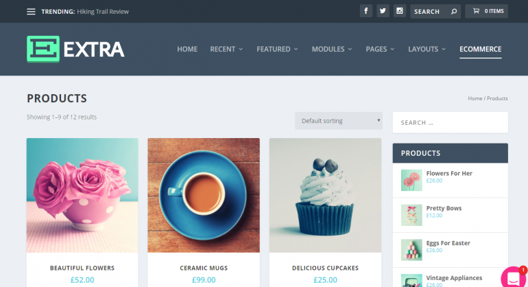 Extra: The 50 Best WordPress eCommerce Themes of 2019 (Free and Paid)