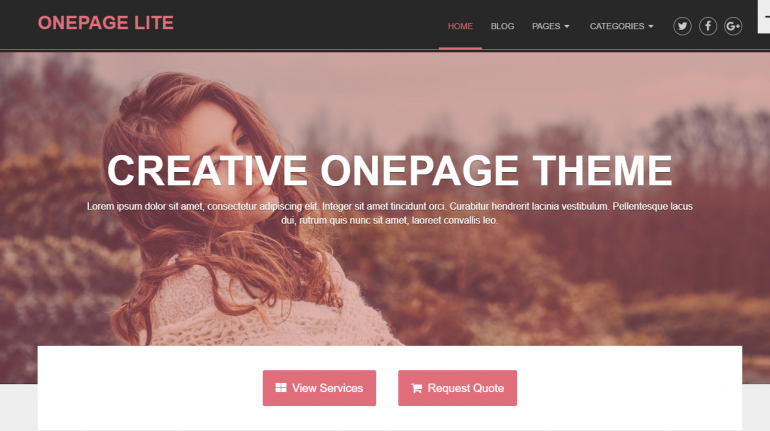 OnePage Lite: Best WordPress Themes For Speakers, Life Coaches and Motivational Speakers 2020