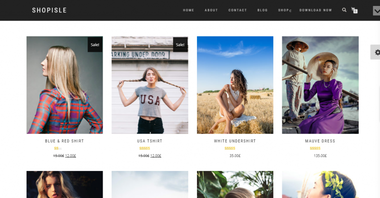 ShopIsle: The 50 Best WordPress eCommerce Themes of 2019 (Free and Paid)