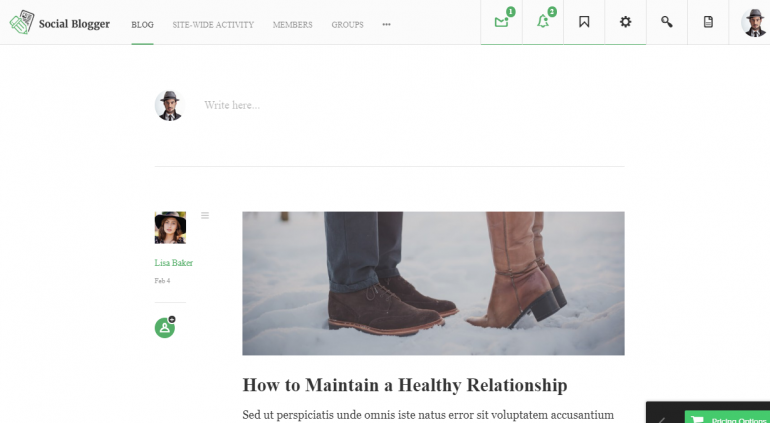 Social Blogger: The Best WordPress Themes For Membership Sites 2019