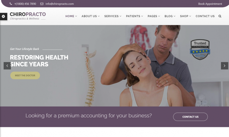 Chiropracto: 10 Best Chiropractic WordPress Themes for 2018