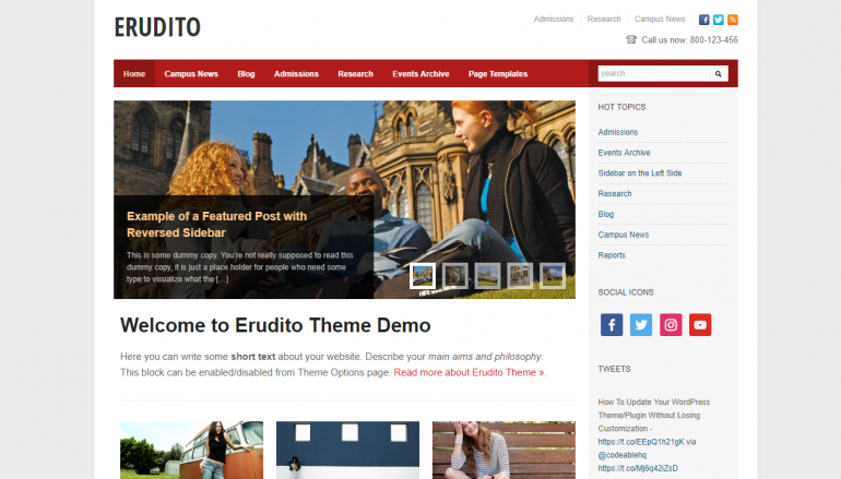 Erudito: The Best LearnDash Themes for WordPress 2018