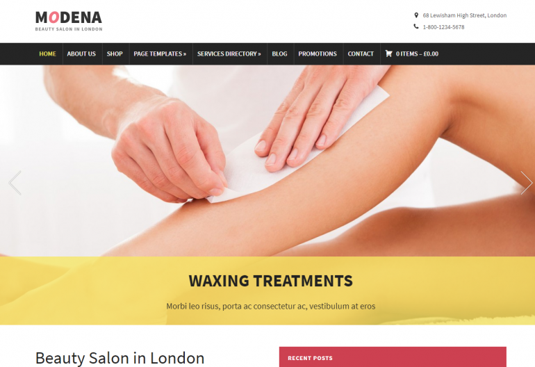 Modena: 10 Best Chiropractic WordPress Themes for 2019